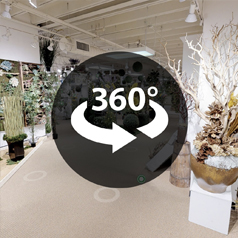 Holiday Virtual Showroom Image