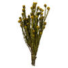 "Photograph of  12"" Yellow Tortum Bundle"