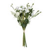"Photograph of 17"" Cream Mini Ranculus Spray"