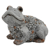 "Photograph of 8"" Gray Frog Outdoor Garden"