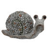 "Photograph of 7.5"" Gray Snail Outdoor Garden"