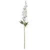 "Photograph of 33.5"" White Wild Lupine 3/pk"