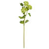 Photograph of 23.5'' Green Ball Flower Spray 2/Pk